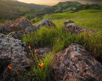 Sunol Sunset (Sunol, California)