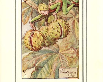 The HORSE CHESTNUT FAIRY Original Antique c 1940 Color Plate The Book of Flower Fairies Cicely Barker