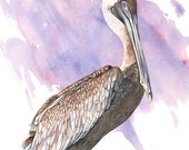 Pelican print of watercolor painting P2516, pelican watercolor, beach house wall art, purple and brown wall art, coastal decor, A4 size