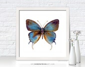 Blue BUTTERFLY Painting, Butterfly Art, Butterfly Print, Original Butterfly Watercolor, Butterfly Greeting Cards, 48 Manto Hypoleuca