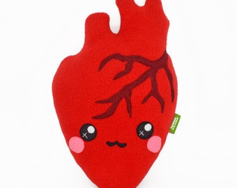 Anatomically correct heart plush toy