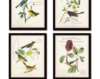 Audubon Bird Prints, French Aviary Collage Print Set No. 3, Botanical Prints, Print Set, Wall Art, Giclee, Vintage Bird Prints, French Style