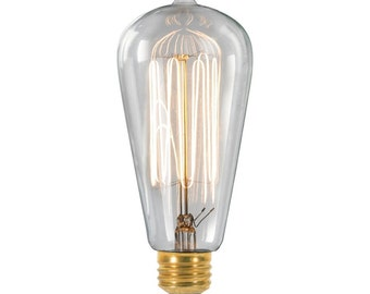 30w/60w Edison bulb. For 120v and 240v use.