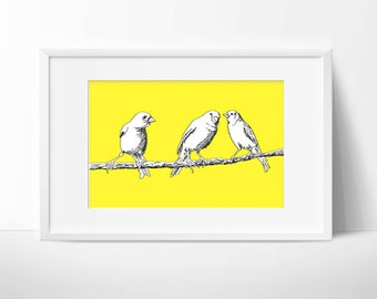 Canaries, Avian Series drawing #5—custom size print, digital drawing, fine art illustration