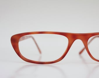 Vintage Pumpkin Tortoise Reading Frames