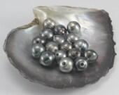 CIRCLE Tahitian Black Pearl, Dark, A+, Drilled to 2mm, Pearl size: 11.00-11.99mm, (J5) PER PEARL