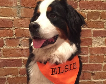 Personalized Halloween Dog Bandana - Over the Collar Style -  Candy Corn - Makes a Great Gift
