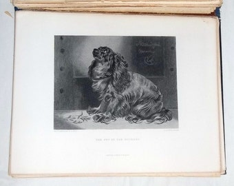ca1880 BOOK, Pictures by Sir Edwin Landseer, 17 plates, Virtue & Co, London