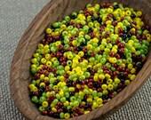 20g Czech seed beads Mixed yellow green brown seed beads MIX-20 Czech rocailles Seed bead soup 11/0 seed beads last