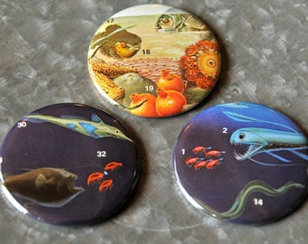 """Fish 2.25"""" Magnet Set - Set Of Three Includes Organza Bag - Ready To Ship"""