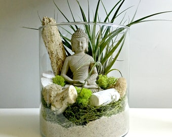 Large air plant terrarium - glass vase Living decor DIY kit - gift for any occasion- Buddha zen decor