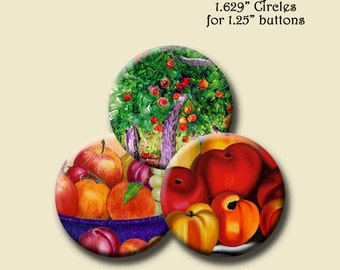FRUIT FULL -  Digital Collage Sheet 1.629 inch round images for 1.25 inch buttons. Instant Download #112.