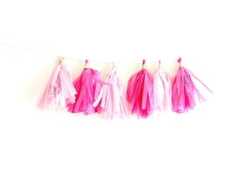 Pale Pink & Hot Pink Tassel Garland - Pink tassel garland, tissue fringe banner, cake smash banner, photo banner, tissue tassels