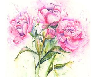Peonies -  Watercolor flower print - floral watercolor art