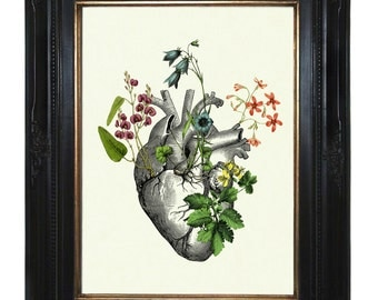 Flowers Anatomical Heart Art Print II Love - Victorian Steampunk Art Print Gothic Morbid Poster