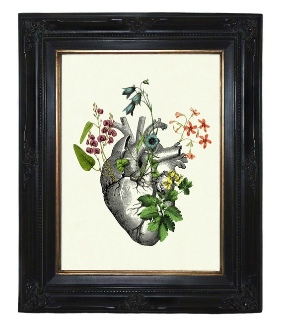 Flowers growing on Anatomical Heart II Love - Victorian Steampunk art print Gothic Morbid