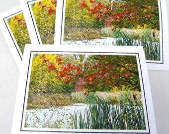 Photo Note Card Set - Set of Four Photo Cards - Autumn Pond - Set of 4 Blank Note Cards - Nature Photography - Gift Set - Bird Habitat