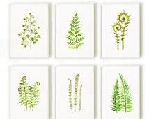 Botanical watercolor painting, Fern print Set of 6, Garden print, Green wall decor, Spring decor, Living room artwork, green leaf painting