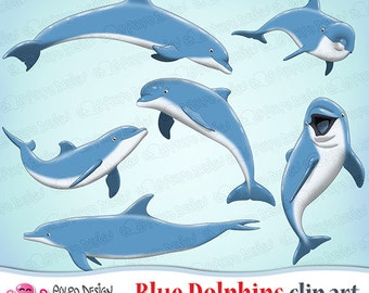 Blue Dolphins clipart. Dolphin clipart, dolphin clip art, dolphins png, blue clipart, sea creatures, ocean clipart. Commercial&personal Use.
