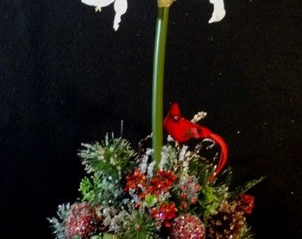 Amaryllis decor etsy for Amaryllis christmas decoration