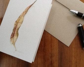 Eucalyptus leaf, Blank card.