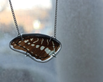 Fly || Butterfly Wing in Resin. Butterfly Necklace.