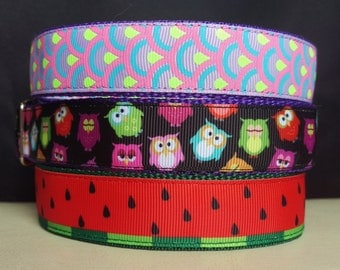 "House Collar - Whippet, Greyhound, Iggy, small to large dog - 1"" width - Adjustable Tag Collar - Watermelon, Owls, Pastel Deco"