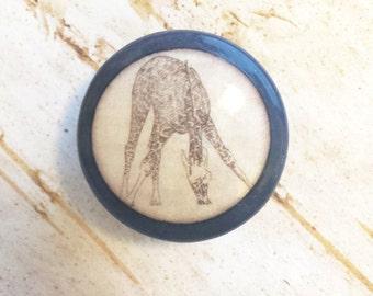 Animal Print Wood Knobs Drawer Pulls Tiger Cheetah Giraffe
