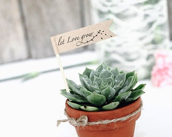 """DIY succulent favour flag (small size)- Text editable """"Let Love Grow"""" flag, INSTANT Digital Download, Personalised tags , DIY thank you tag"""