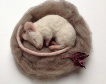 Mouse Nap