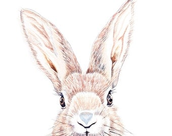Rabbit Watercolour Painting // Animal Art Print // Woodland Creature Illustration