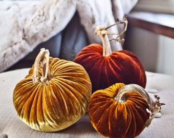 Velvet Pumpkins: Autumn Collection