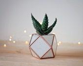 Mini Desk Planter, Shelf Decorations, Coworker Gift, Geometric Planter, Succulent Pot, Stained Glass Terrarium, Modern Decor, Air Plant Vase