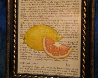 Oranges and Lemons acrylic painting on vintage book page in frame