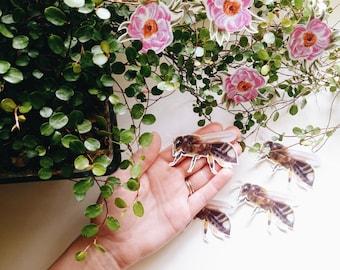 Bee stickers, Paper Sticker, Die cut stickers, Laptop Sticker, Honeybee Sticker, Pollen Pants, Handmade Stickers, Original bee stickers