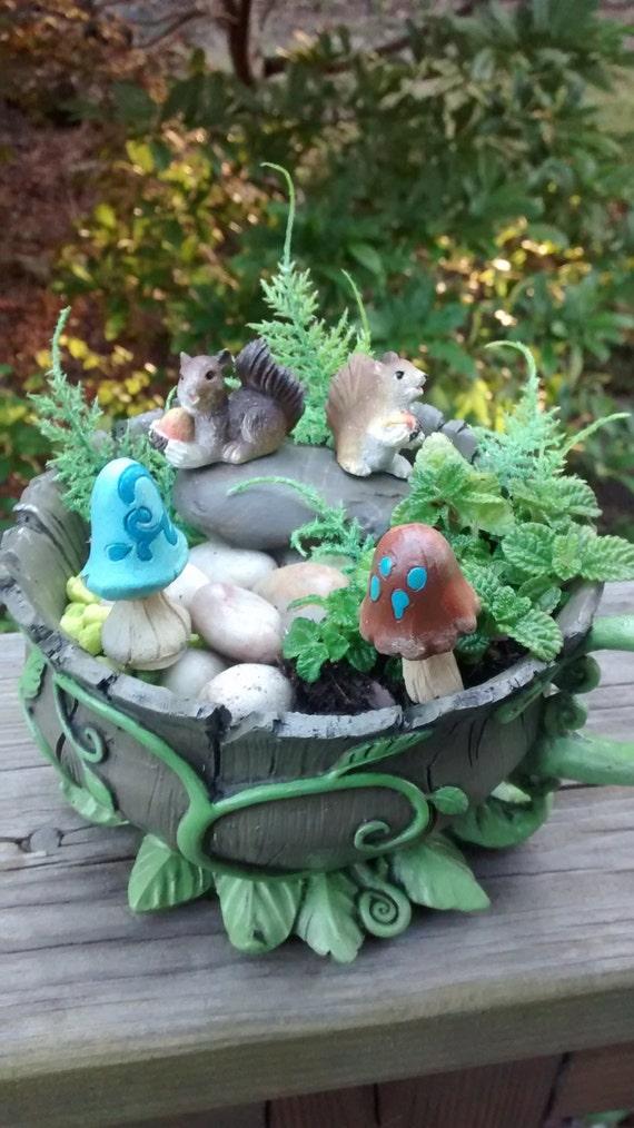 Squirrels Miniature Fairy Garden Kit W Real Plants Woodland