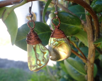 NZ Paua and Copper Top knot Earrings