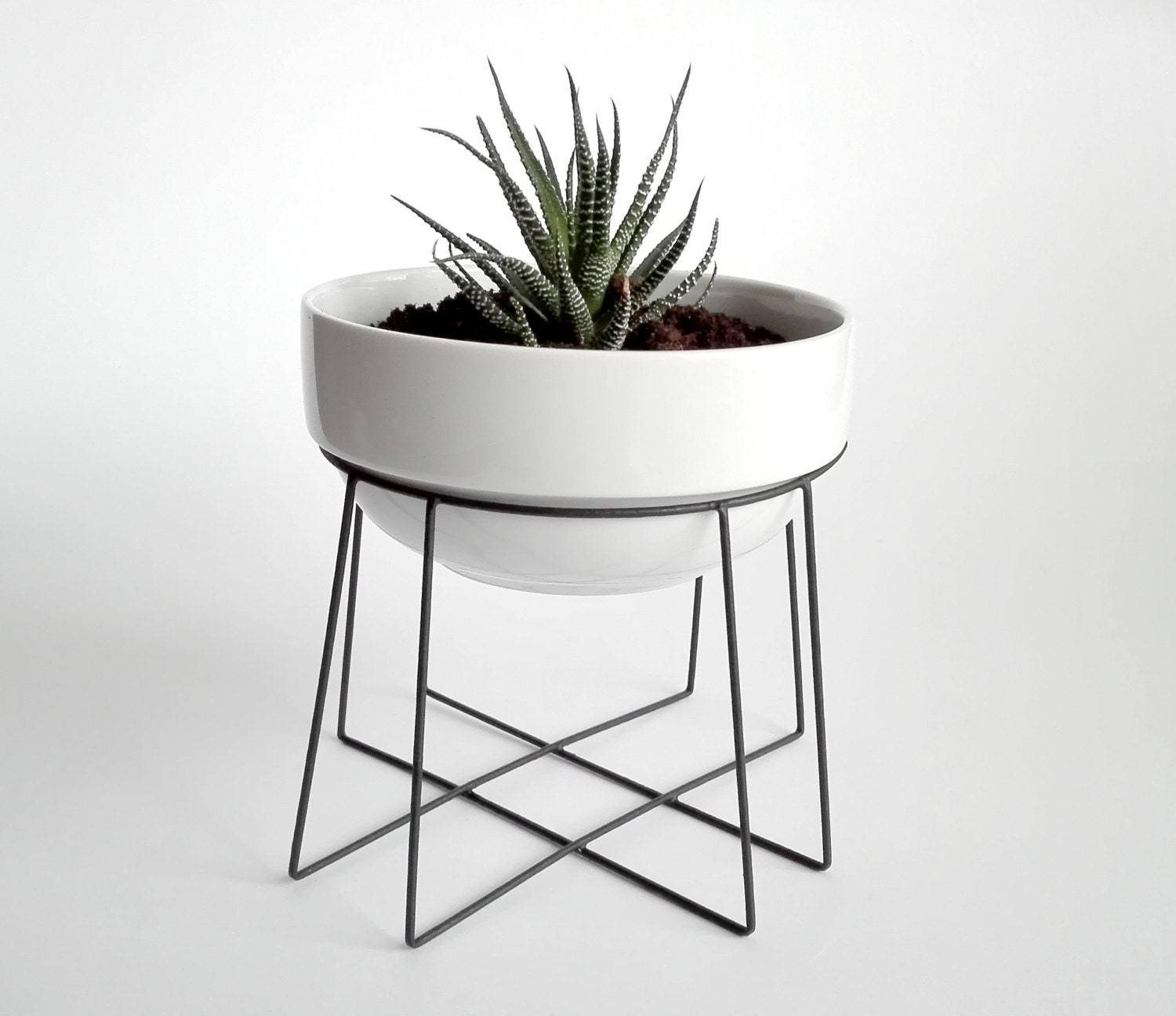 Geometric Plant Stand Spider With A Ceramic White