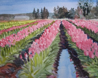 Tulip fields watercolor study