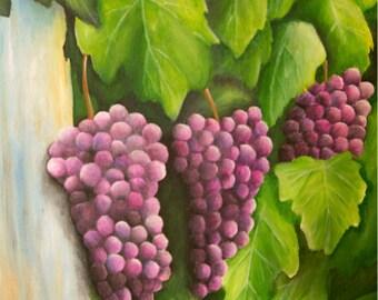 Grapes on the Vine Print