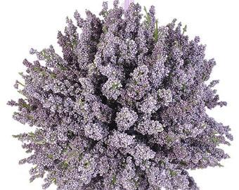 """Lavender Kissing Ball - Lavender Pomander 8"""""""