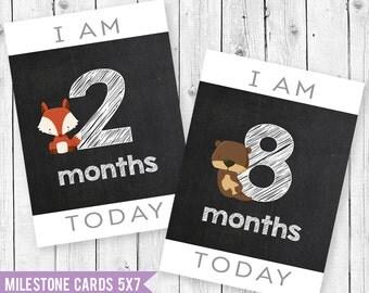Animal Baby Milestone Cards 5x7, Baby Month Cards, Baby Photo Cards, boy Milestone Card, Baby Shower Gift, Newborn Gift, BabyGift, PhotoProp