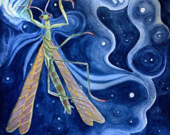 Star Maker- Praying Mantis (Watercolor)