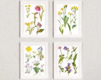 Floral Lithograph Print Set - Set of Four Colourful Floral Lithographs from the 1970s