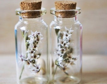 1 X mini glass bottles filled with startic, small glass vail jewelry set, glass orb, mini glass bottle with cork lid