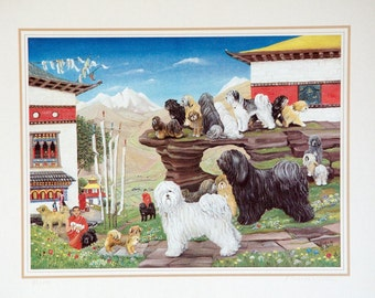 tibetan dogs in Bhutan (by G.Bracksieck)