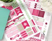 Printable Watermelon and Cherry Planner Stickers, Erin Condren Life Planner, Scrapbooking, Planner Printables, Filofax, Instant Download