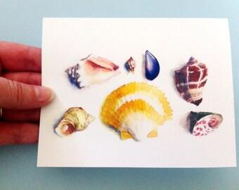 Watercolor Card - Seashells