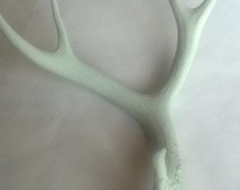 Mule Deer Antler Shed Painted Off-White