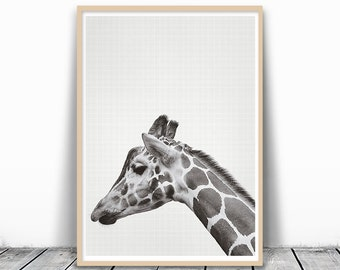 Giraffe Print, photography prints, Animal Photography, Wall Art Photography, Black and White Animal Portrait, Animal Print, Digital Download